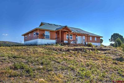 La Plata County Single Family Home UC/Contingent/Call LB: 2098 Cr 120