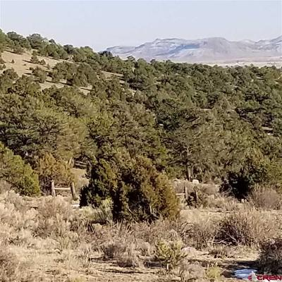 South Fork Residential Lots & Land For Sale: 699 Valley View Road