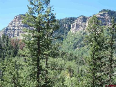 Durango Residential Lots & Land For Sale: 1332 Lake Purgatory Drive