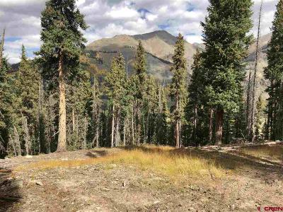 Silverton Residential Lots & Land For Sale: Cr 20a