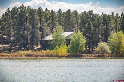 Pagosa Springs Single Family Home UC/Contingent/Call LB: 217 Cloud Cap Avenue