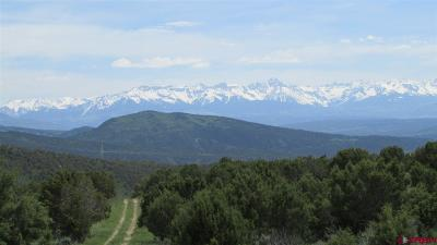 Montrose Residential Lots & Land For Sale: 2 Winchester Trail
