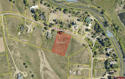 Bayfield CO Residential Lots & Land NEW: $75,000