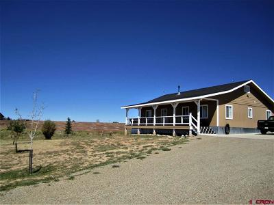 Mancos Single Family Home For Sale: 31671 Road R
