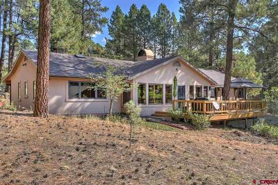 Durango Single Family Home For Sale: 775 Golden Dipper