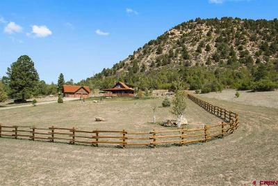 La Plata County Single Family Home UC/Contingent/Call LB: 619 Spirit Wind Road
