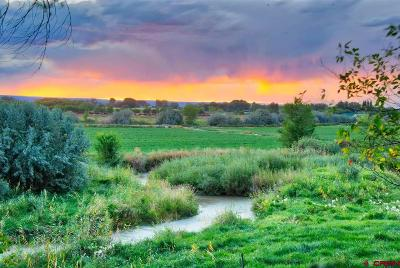 Olathe CO Residential Lots & Land For Sale: $1,760,000