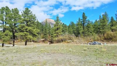 Durango Residential Lots & Land For Sale: 1049 Twin Buttes Avenue