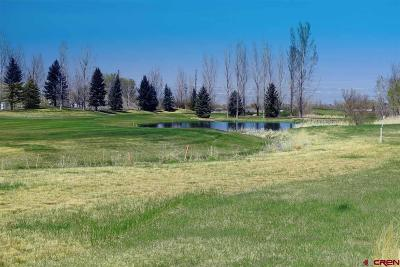 Montrose Residential Lots & Land For Sale: 551 Cobble Drive