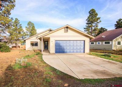 Pagosa Springs Single Family Home For Sale: 161 Sundown Circle