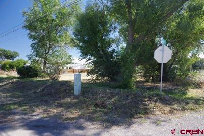 Montrose Residential Lots & Land For Sale: 1624 Story Lane
