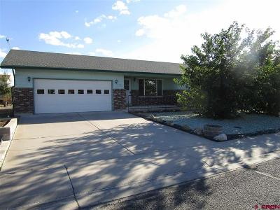 Montrose Single Family Home NEW: 2042 Princeton Way