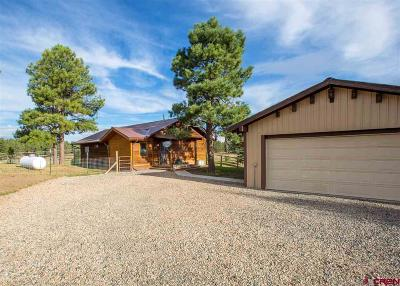 Pagosa Springs Single Family Home NEW: 200 Whitaker Pl