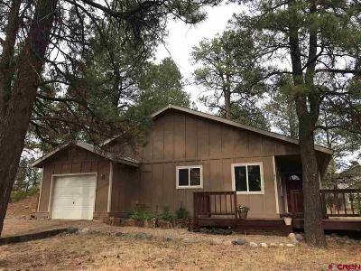 Pagosa Springs Single Family Home For Sale: 91 Cleek Court