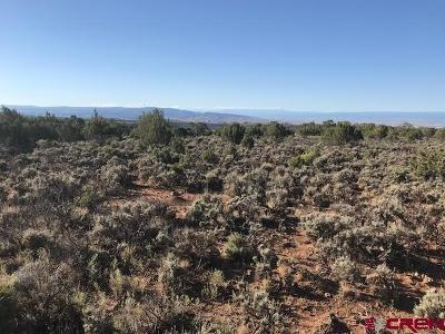Cedaredge Residential Lots & Land For Sale: 2525 Road