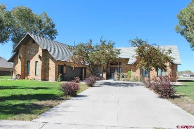 Alamosa Single Family Home For Sale: 336 Riverwood Drive