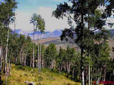 Gunnison County Residential Lots & Land For Sale: 1754 Red Mountain Ranch Road