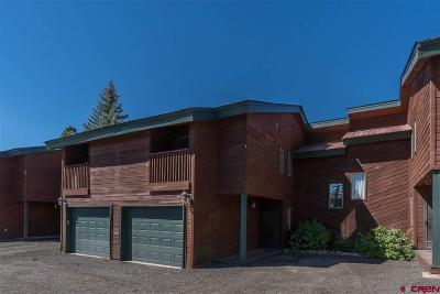 Pagosa Springs Condo/Townhouse UC/Contingent/Call LB: 69 Ace Court