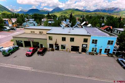 Gunnison County Commercial For Sale: 301 Belleview #6C,  6D,