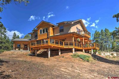 La Plata County Single Family Home For Sale: 51 West Fork Road