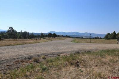 Mancos Residential Lots & Land For Sale: 40531 Road M.5