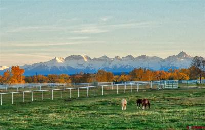 Montrose CO Farm For Sale: $2,400,000