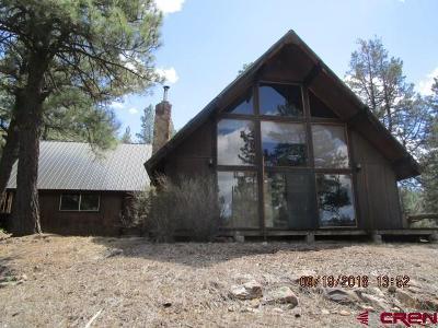 Pagosa Springs Single Family Home For Sale: 163 Dyke Boulevard