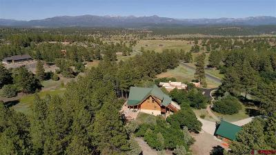 Pagosa Springs Single Family Home For Sale: 1146 Bristlecone Drive