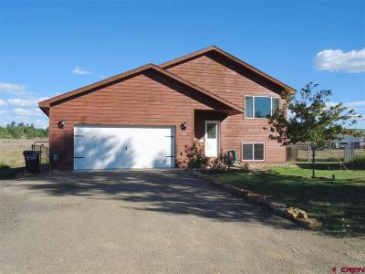 Pagosa Springs Single Family Home For Sale: 22 Lancer Court