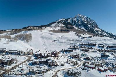 Mt. Crested Butte Residential Lots & Land For Sale: 14 Castle Road