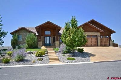 Montrose Single Family Home For Sale: 1553 Windsor Way