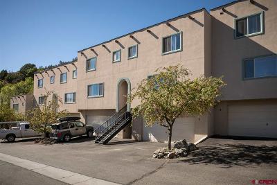 Durango Condo/Townhouse For Sale: 525 Animas View Drive #10