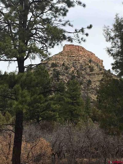 Durango Residential Lots & Land For Sale: Bellflower Court Lot 84