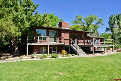 Montrose Single Family Home For Sale: 2320 E Miami Road