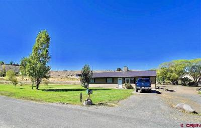 Montrose Single Family Home UC/Contingent/Call LB: 13330 L Road