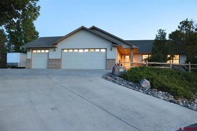 Montrose Single Family Home For Sale: 67210 Omar Court