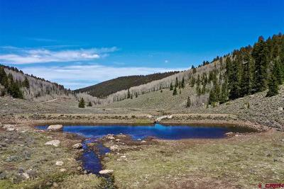 Gunnison County Residential Lots & Land For Sale: Cardwell Draw