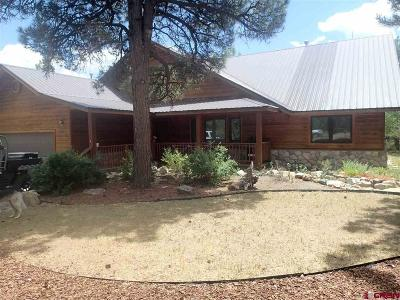 Pagosa Springs Single Family Home For Sale: 206 Stevens Circle