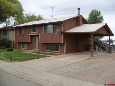 Cortez Single Family Home For Sale: 1410 Navajo