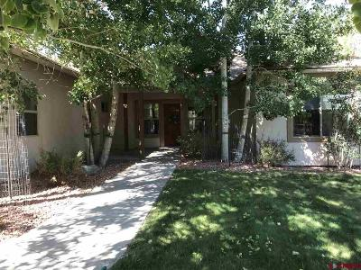 Ridgway Single Family Home UC/Contingent/Call LB: 795 Sabeta Drive