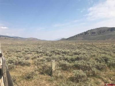 Gunnison County Residential Lots & Land For Sale: Cr 818 Road