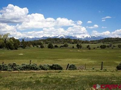 Mancos Residential Lots & Land UC/Contingent/Call LB: Road P.2