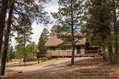Pagosa Springs Single Family Home For Sale: 43 N Driver Court
