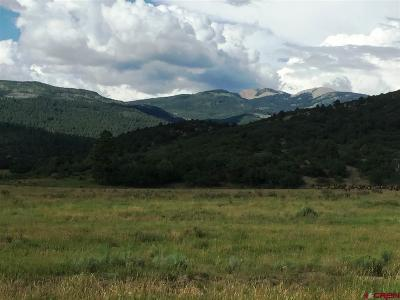 La Plata County Farm For Sale: 600 Cr 139