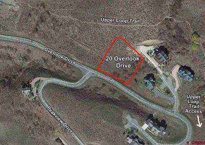 Residential Lots & Land For Sale: 20 Overlook Drive