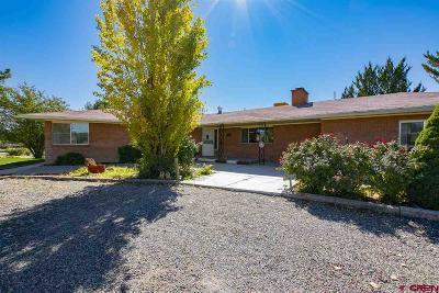 Montrose Single Family Home For Sale: 2392 E Miami Road