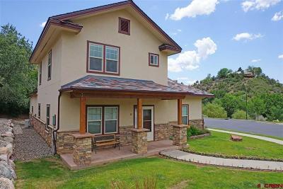 La Plata County Single Family Home For Sale: 32 E Animas Village Lane