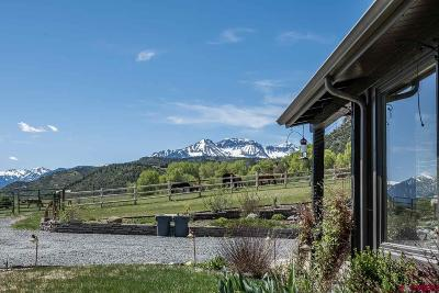 Ouray County Single Family Home For Sale: 8920 Hwy 62