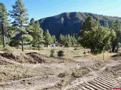 Durango Residential Lots & Land For Sale: 66 Tipple Avenue
