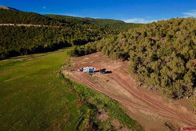 Cedaredge Farm For Sale: 20100 Brimstone Road